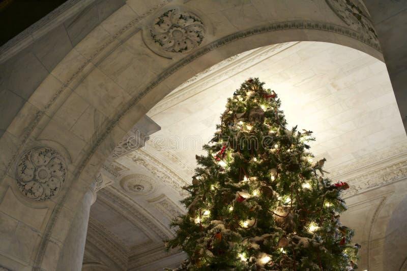 Albero Di Natale Java.Albero Di Natale Dalla Macchina Fotografica Immagine Stock
