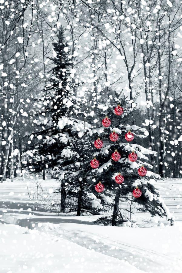 Albero di Natale con le sfere di vetro rosse fotografia stock