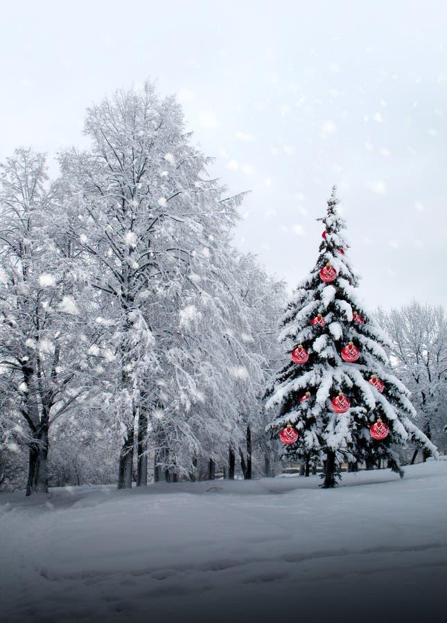 Albero di Natale con le sfere di vetro rosse fotografia stock libera da diritti