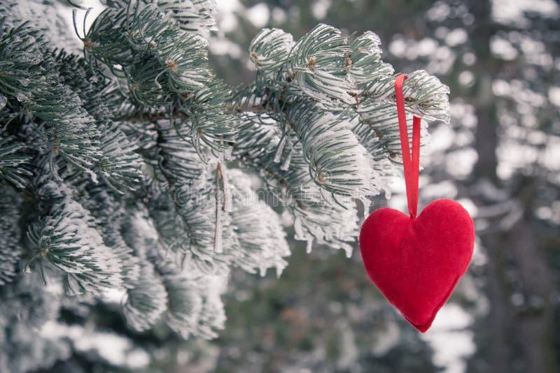 Albero di Natale congelato e neve vaga con cuore rosso Amore e fotografia stock libera da diritti