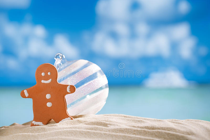 Albero di Natale dell'uomo e delle stelle marine di pan di zenzero sulla spiaggia con il seasca immagini stock libere da diritti
