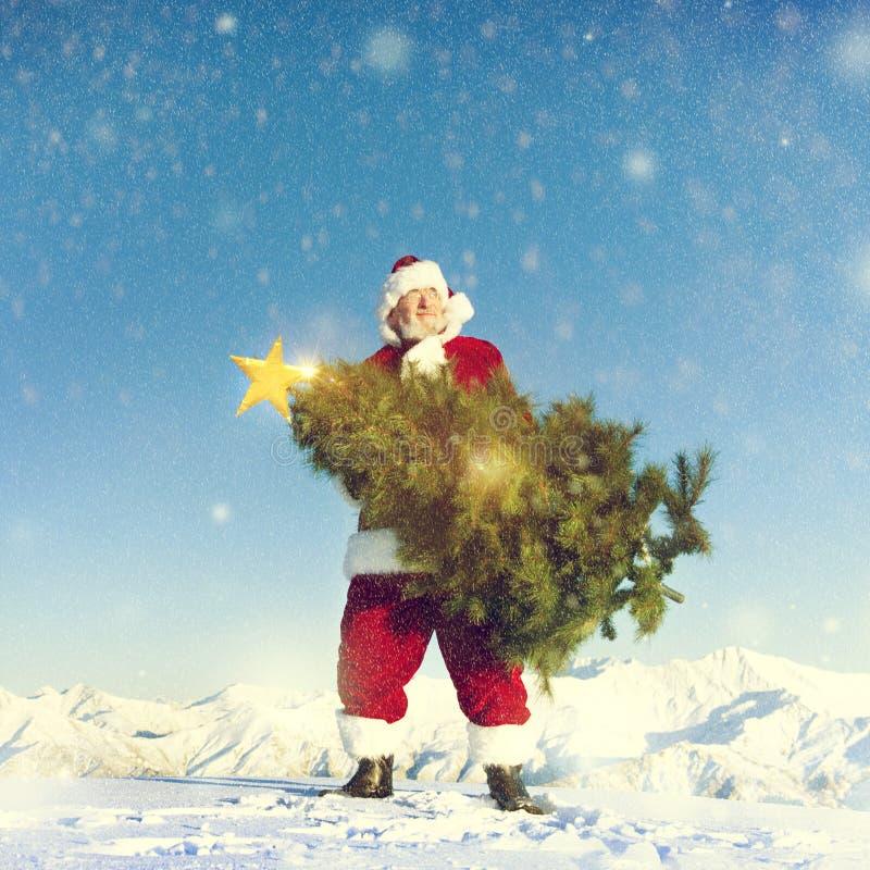 Albero di Natale di trasporto del Babbo Natale sulla montagna innevata fotografie stock