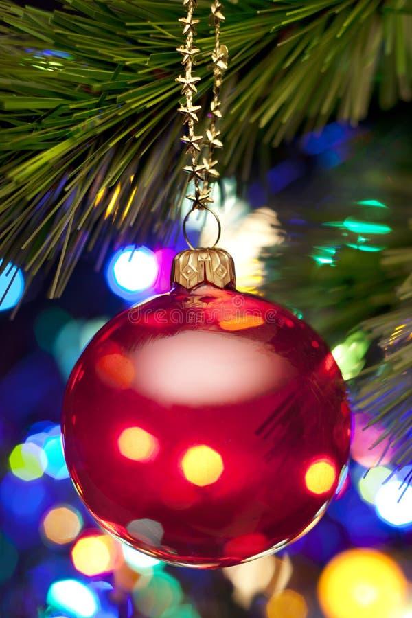 Albero di Natale ed indicatori luminosi fotografia stock libera da diritti