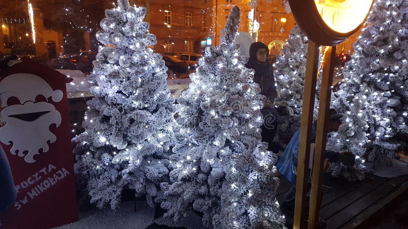 albero di Natale nevoso fotografia stock libera da diritti