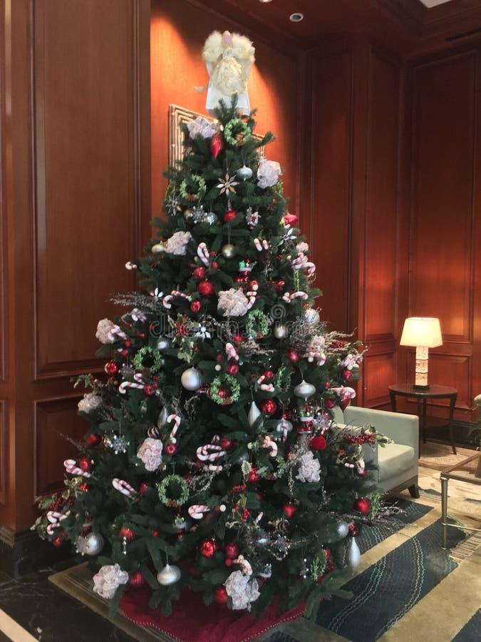 Albero di Natale in salone immagine stock libera da diritti