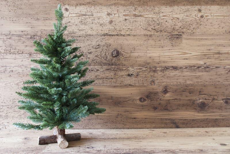 Albero di Natale, spazio della copia, fondo di legno invecchiato fotografie stock libere da diritti