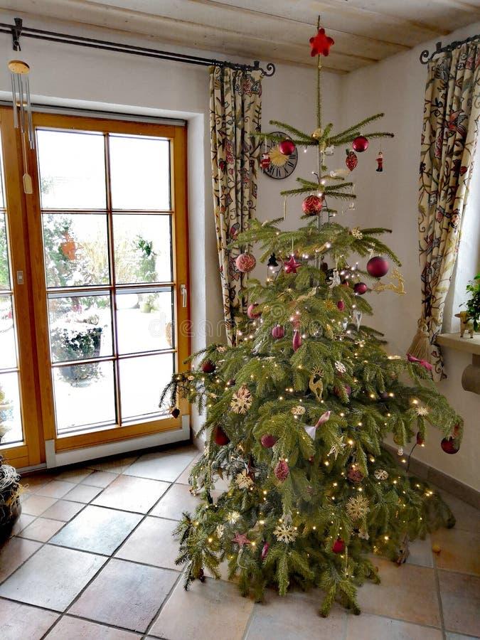 Albero di Natale stanco ma bello fotografia stock libera da diritti