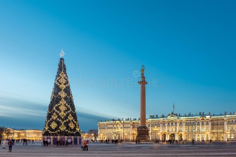 Albero di Natale sui precedenti dell'eremo su una sera di inverno St Petersburg La Russia immagini stock