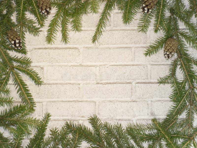 Albero di Natale sull'albero di Natale del fondo del muro di mattoni sul fondo del muro di mattoni fotografia stock libera da diritti