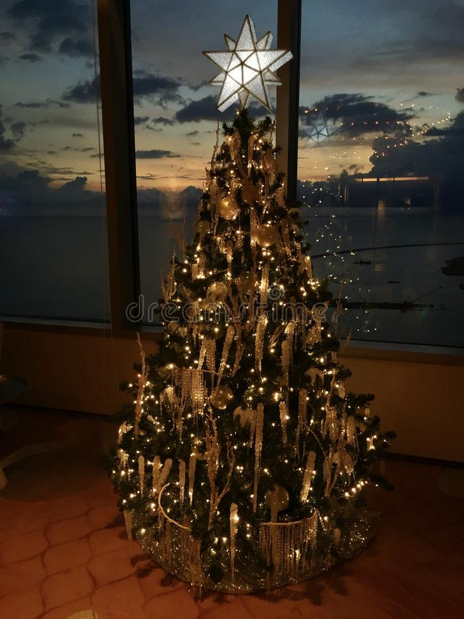 Albero di Natale - tema tropicale, Colombo immagine stock libera da diritti
