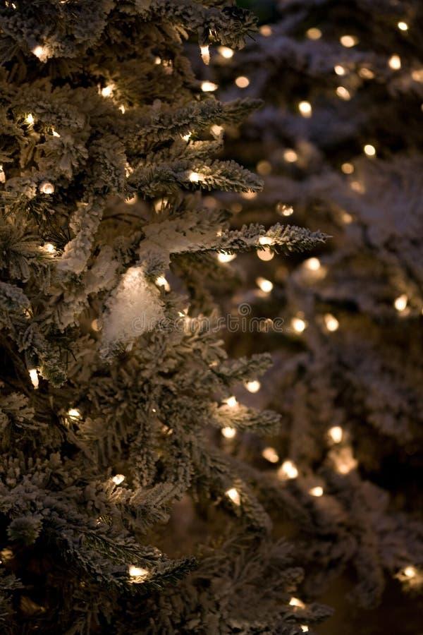 Albero di Natale di verde di vacanza invernale con le luci fotografia stock