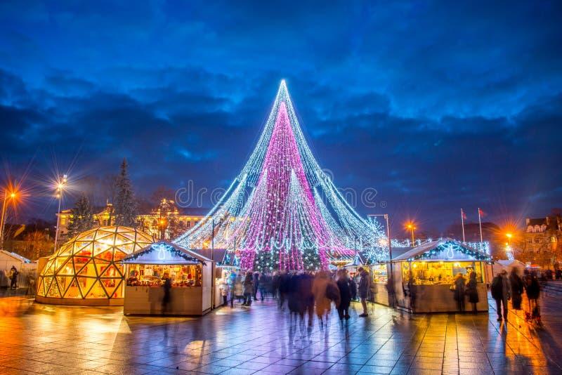 Albero di Natale di Vilnius immagine stock libera da diritti