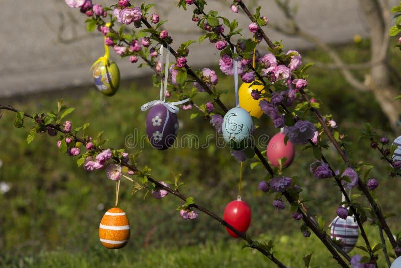 Albero di Pasqua nel giardino immagini stock libere da diritti