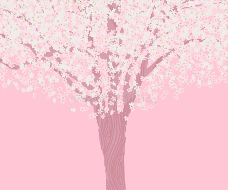 Albero di sakura della piena fioritura illustrazione vettoriale