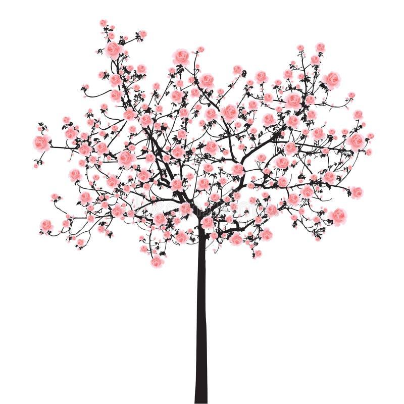 Albero di sakura della piena fioritura royalty illustrazione gratis
