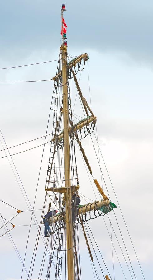 Albero di vecchia nave di navigazione fotografia stock libera da diritti
