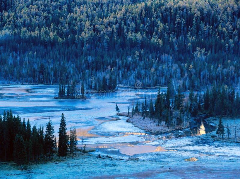 Albero e lago di autunno fotografia stock libera da diritti