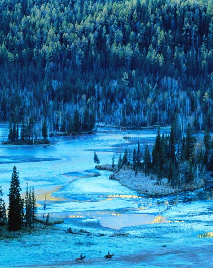 Albero e lago di autunno in kanas fotografia stock