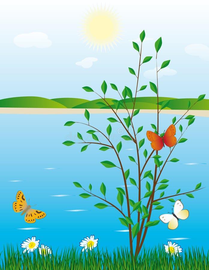 Albero e una farfalla sulla banca di fiume illustrazione vettoriale