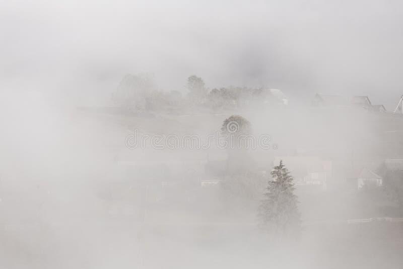 Albero e villaggio in un fondo della nebbia fotografie stock libere da diritti
