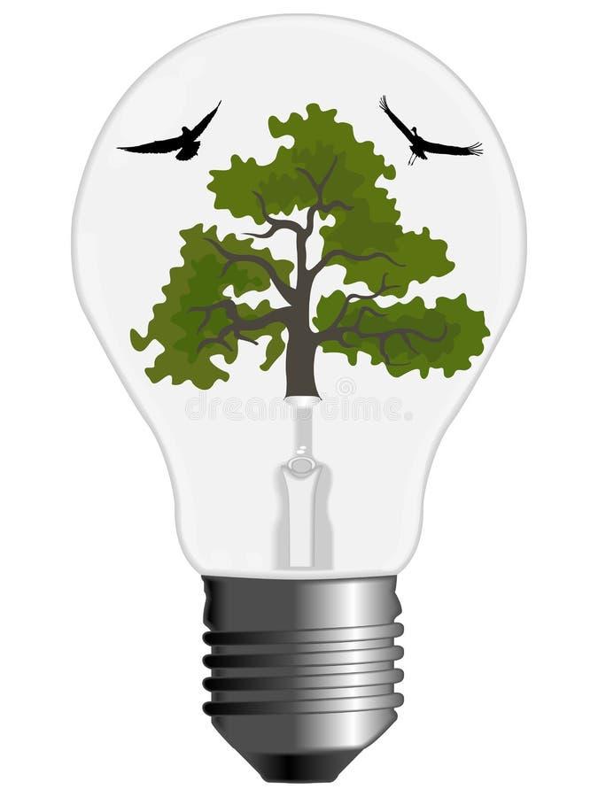 Albero ed uccelli all'interno di una lampadina illustrazione di stock