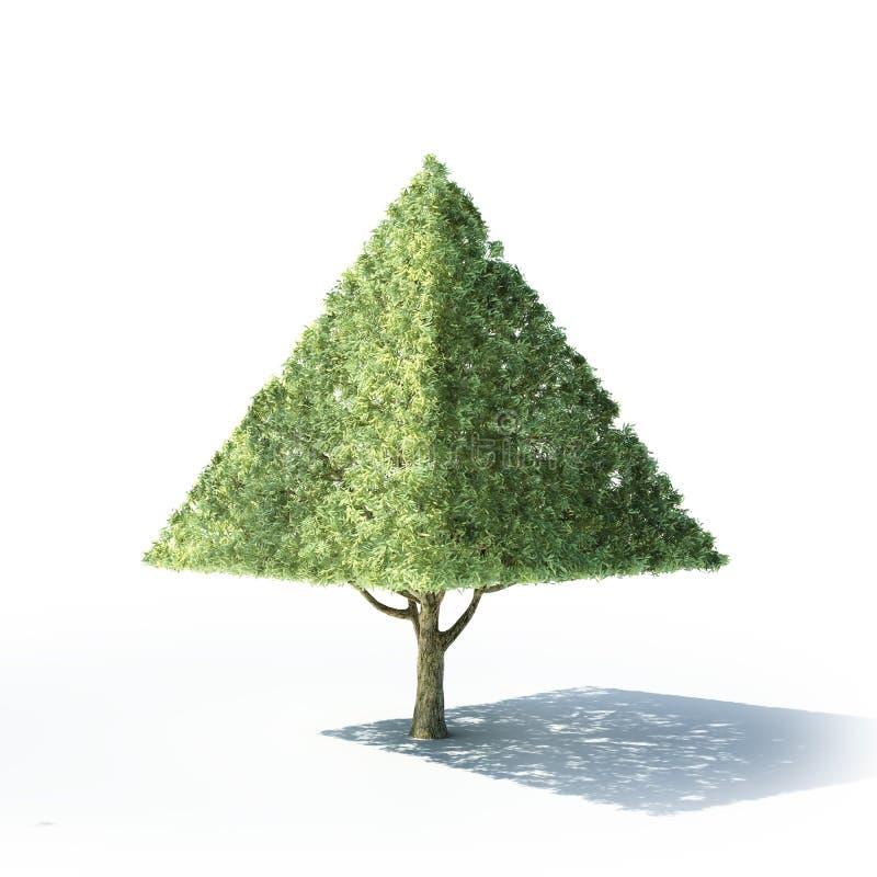 Albero a forma di della piramide illustrazione di stock