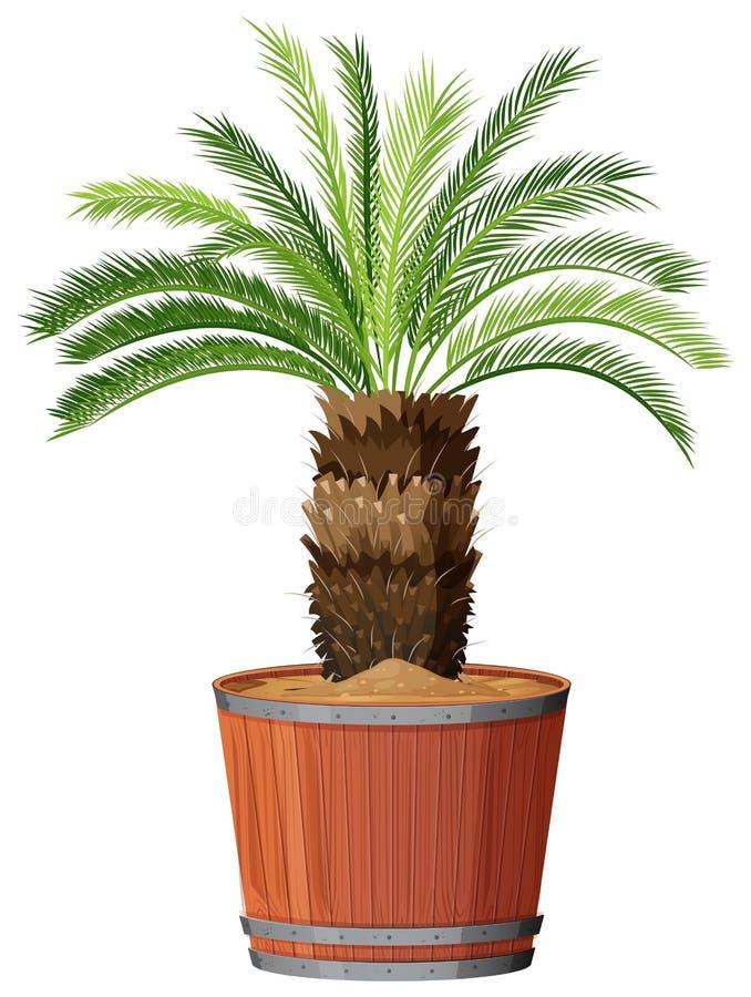 Albero in grande vaso royalty illustrazione gratis