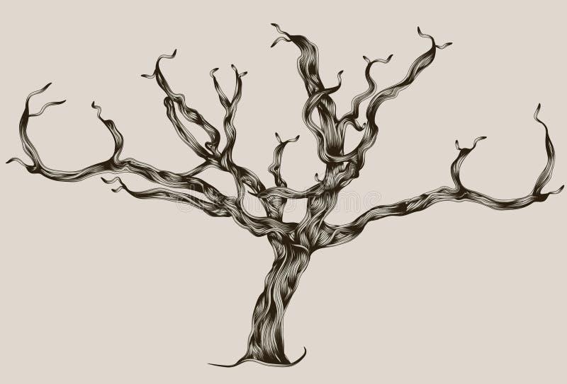 Albero guasto disegnato a mano illustrato stilizzato illustrazione di stock