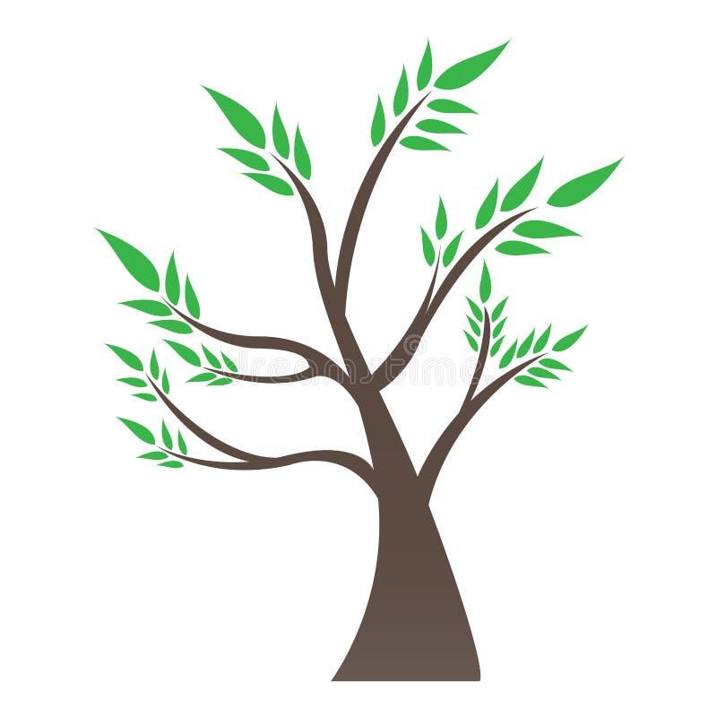 Albero isolato dei bonsai illustrazione di stock