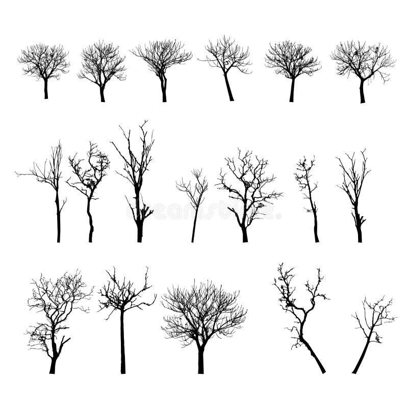 Albero morto senza foglie Vecto fotografia stock
