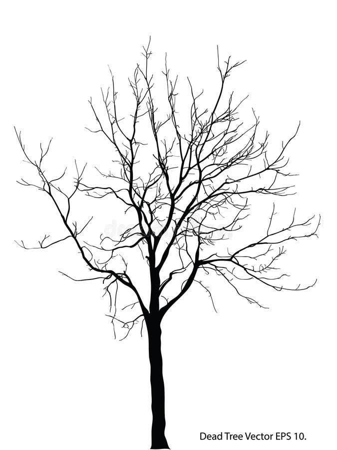 Albero morto senza illustrazione schizzata, ENV 10 di vettore delle foglie fotografie stock libere da diritti