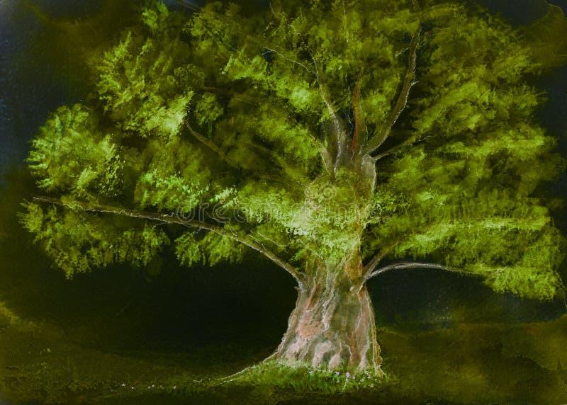 Albero solitario illuminato nella notte royalty illustrazione gratis