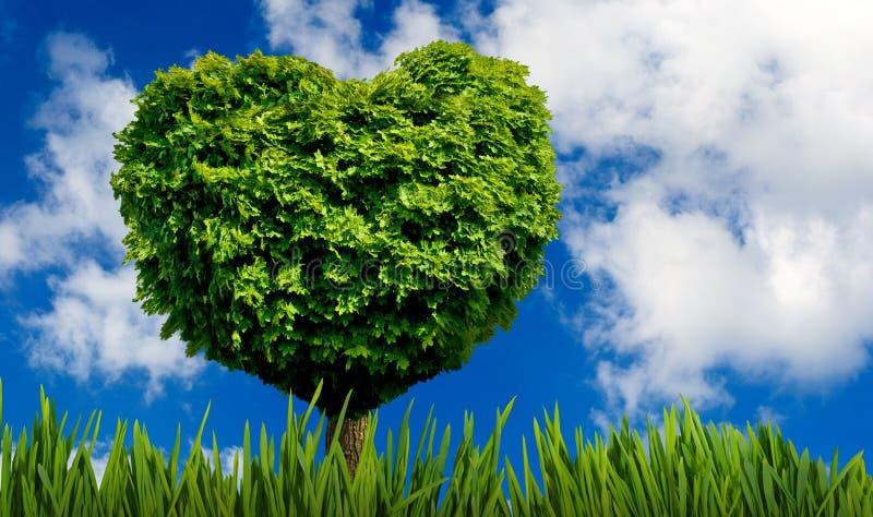 albero sotto forma di cuore come simbolo di amore e di devozione illustrazione di stock