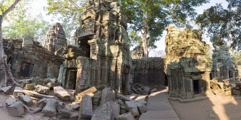 Albero sulla parete di pietra del tempio di Prohm di tum di Prasat a Angkor Thom fotografia stock libera da diritti