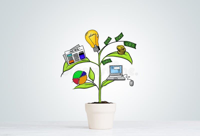 Albero tirato di reddito in vaso bianco per il risparmio di investimento aziendale ed i soldi di fabbricazione illustrazione di stock