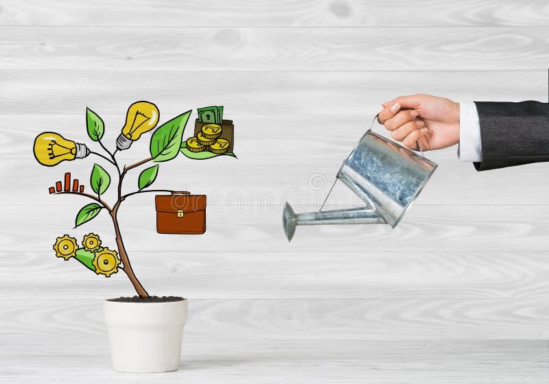 Albero tirato di reddito in vaso bianco per il risparmio di investimento aziendale ed i soldi di fabbricazione immagine stock libera da diritti