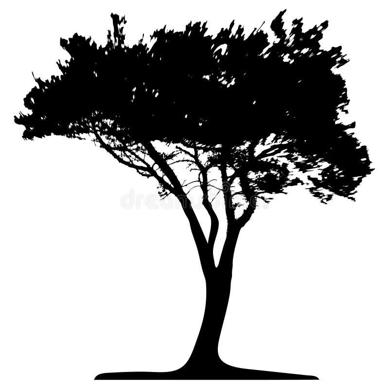 Albero (vettore) royalty illustrazione gratis