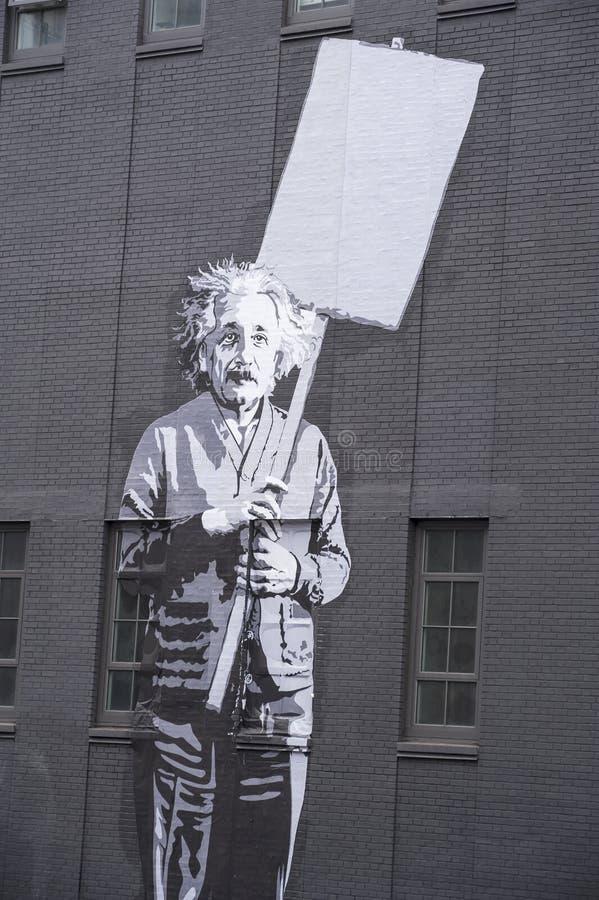 Albert Einstein 库存照片