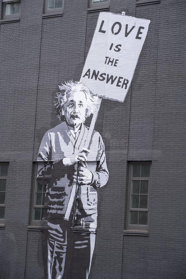 Albert Einstein 免版税库存图片