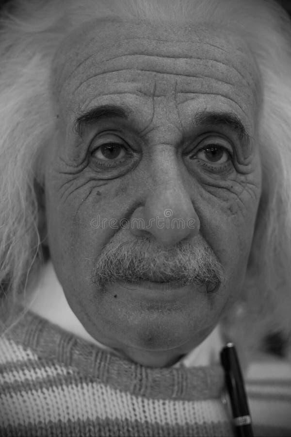 Albert Einstein figura woskowa obraz royalty free