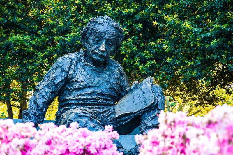 Albert Einstein Memorial USA royaltyfri foto
