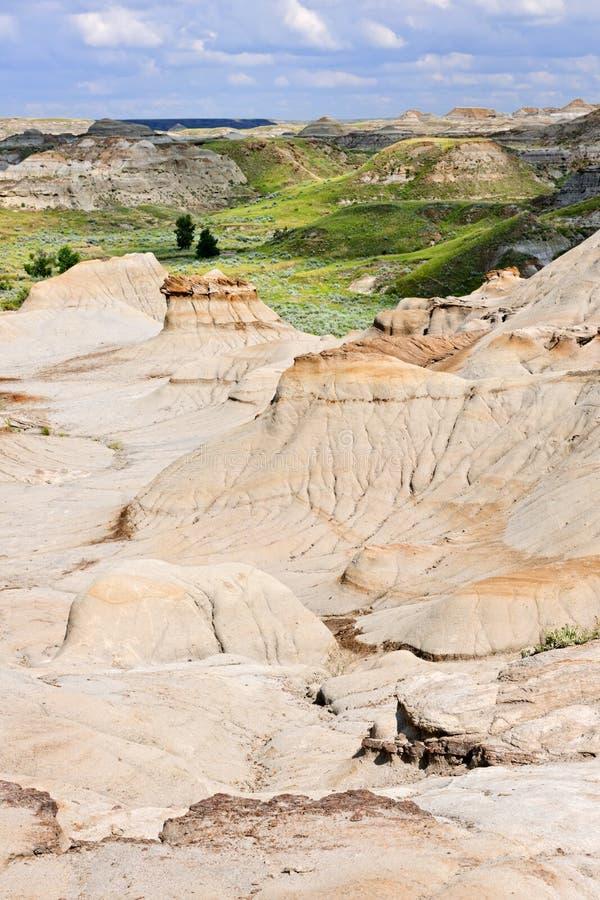 alberta badlands Kanada fotografering för bildbyråer