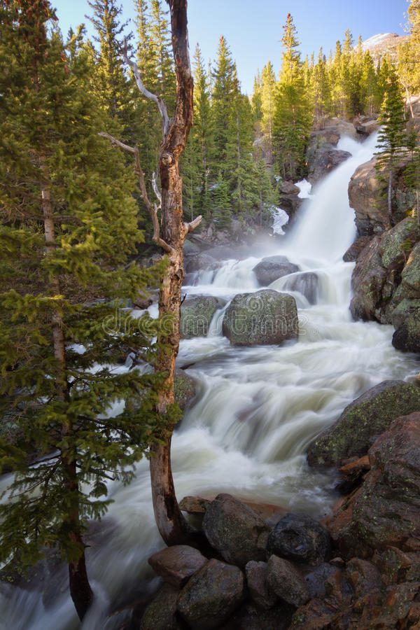 Alberta Falls in Rocky Mountain National Park immagine stock libera da diritti
