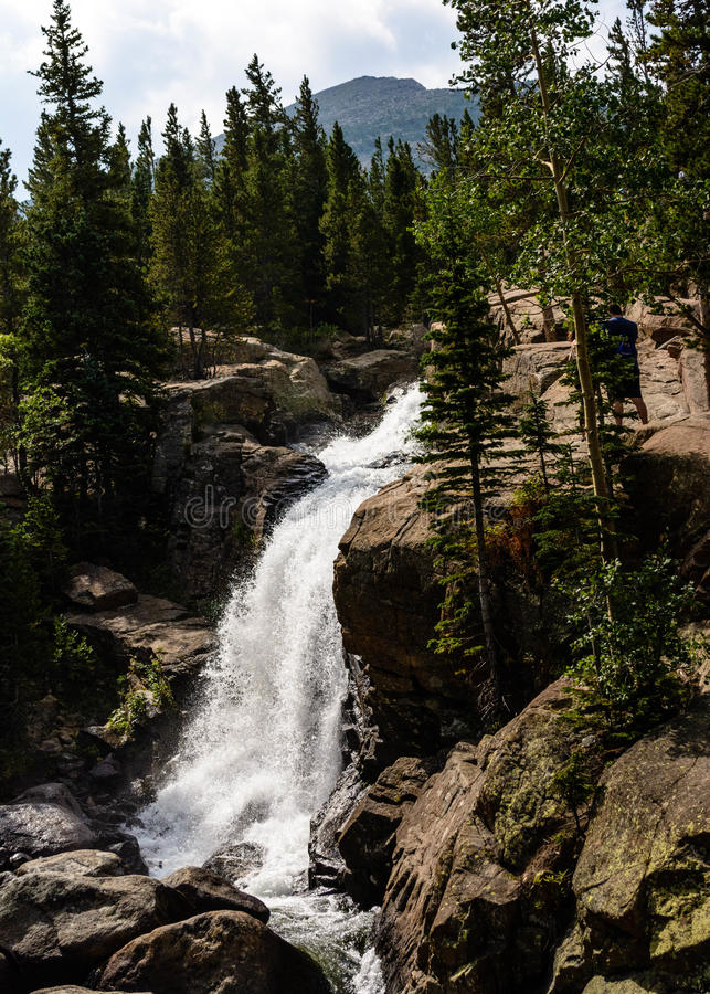 Alberta Falls in Rocky Mountains National Park stock images