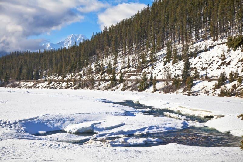 Alberta-Fluss stockfotografie