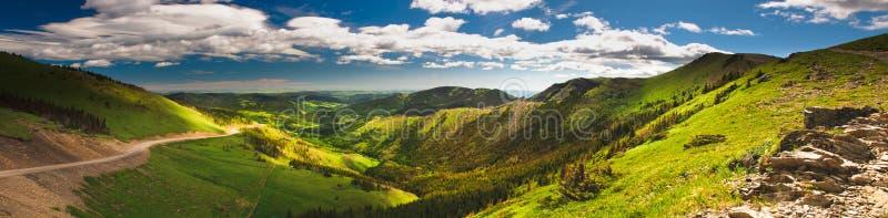 alberta foothills arkivfoton