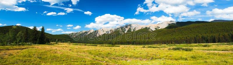 Alberta Foothills royaltyfri foto