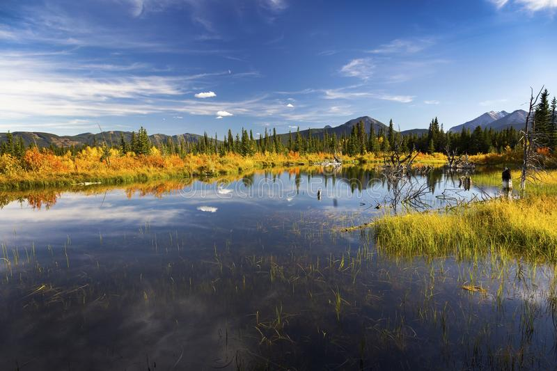 Alberta Foothills Autumn Landscape arkivfoton