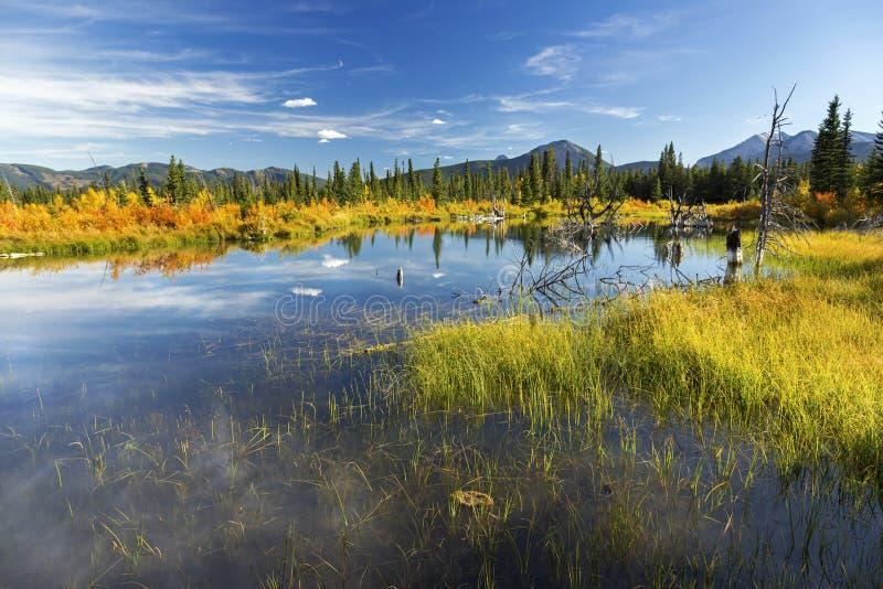 Alberta Foothills Autumn Landscape royaltyfria foton
