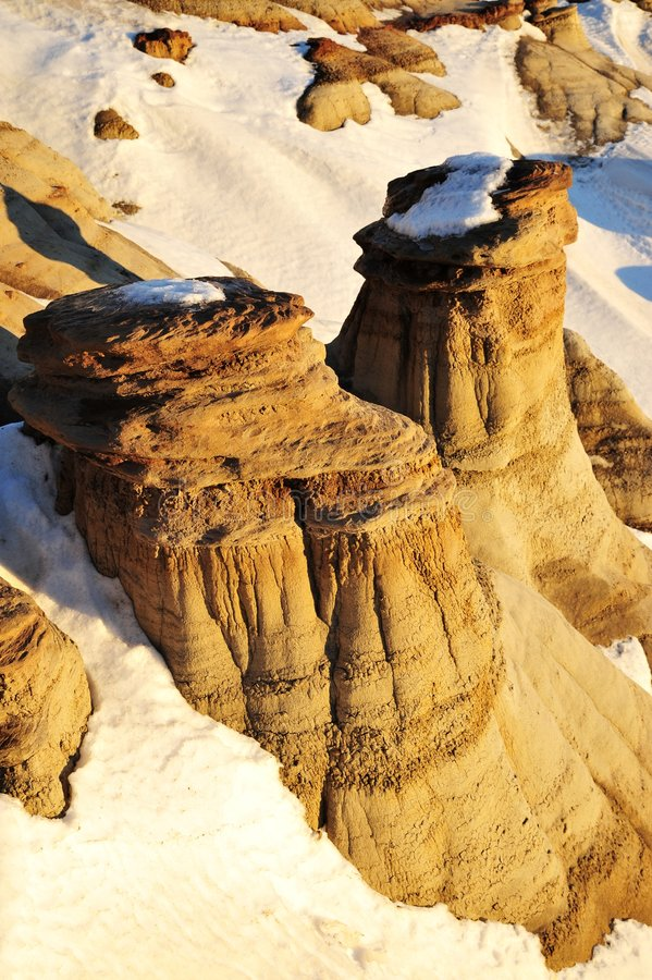 Alberta hoodoos field royalty free stock photo